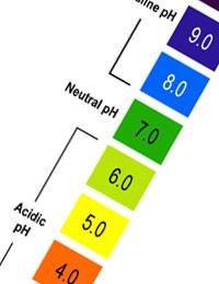 naturopath london cleanse alkalanize acidity acid base saliva urine treatment